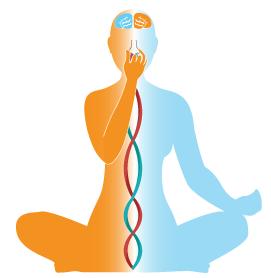 NadiShodhana-yogakevala