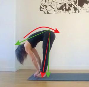 Padahastasana-yogakevala