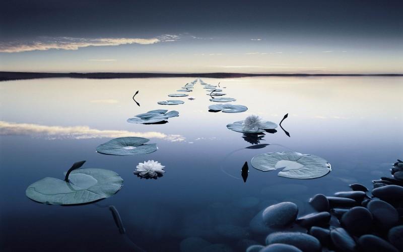 tranquilidad-yogakevala